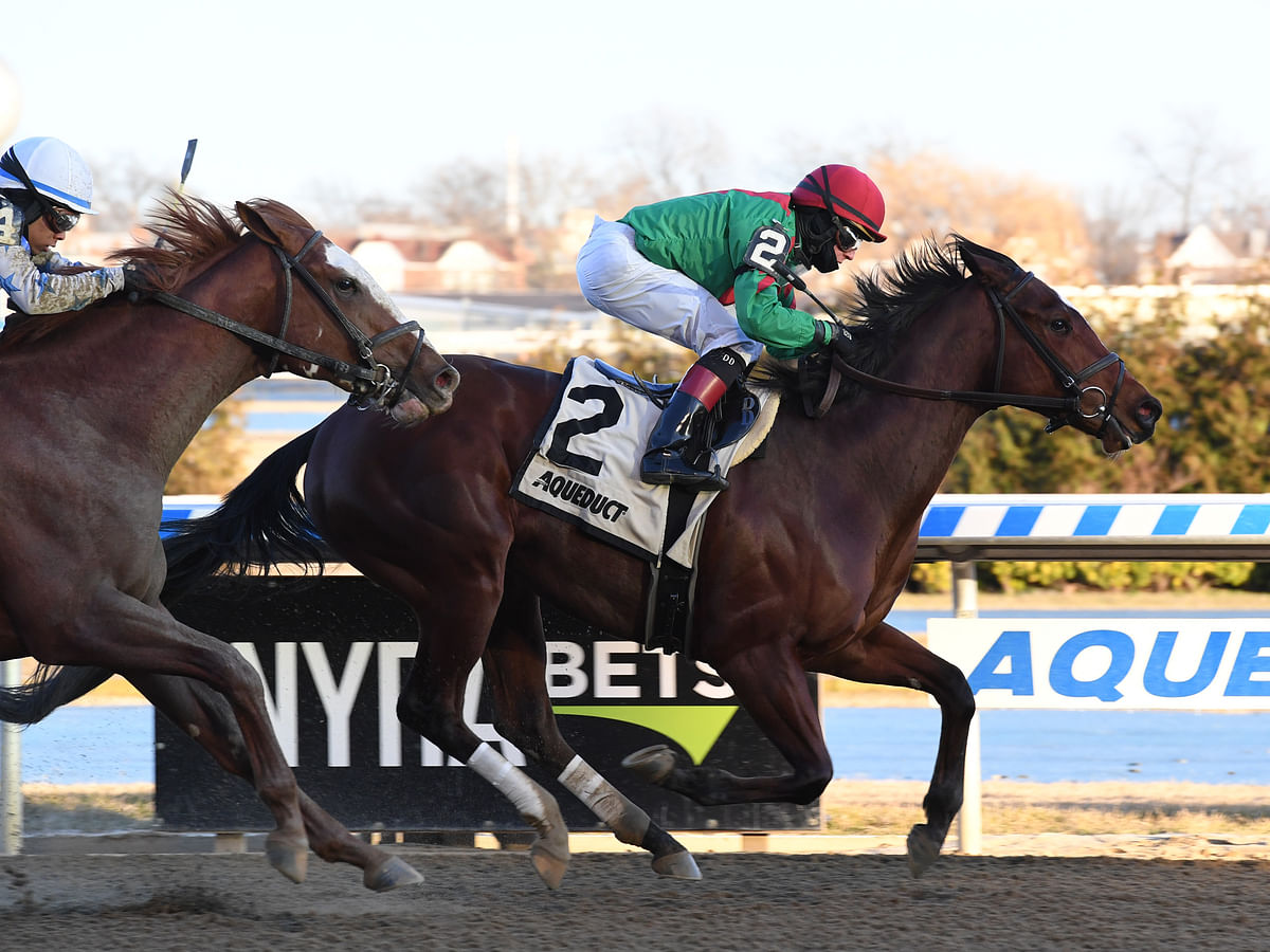 Horse Racing Wednesday: Garrity picks three races at Aqueduct