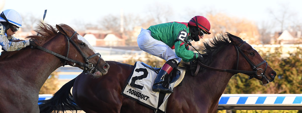 Blindwillie McTell winning the Rego Park at Aqueduct in January.