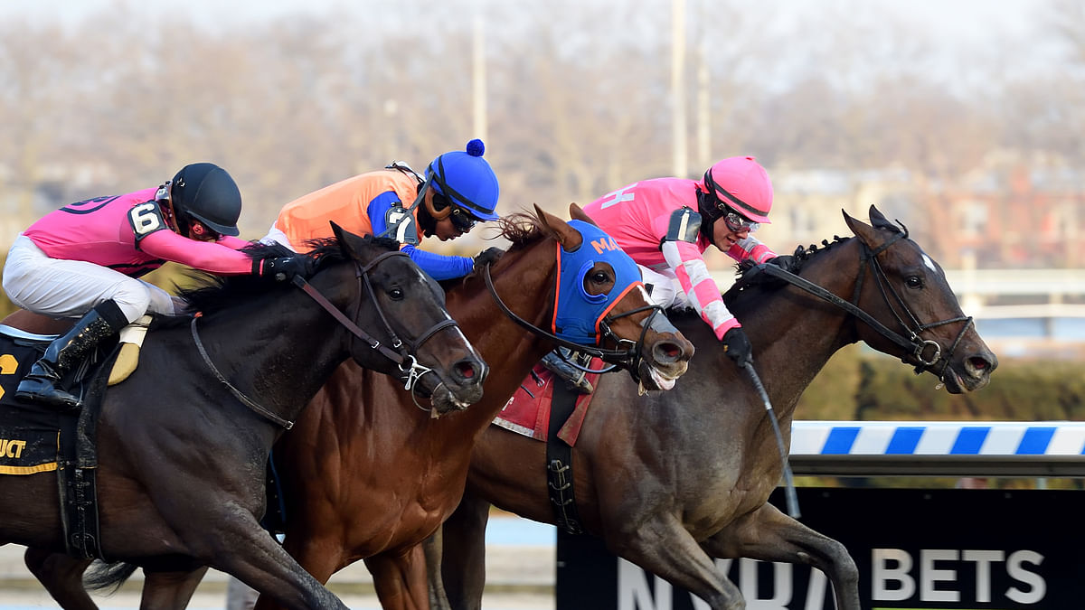 Garrity's Saturday Stakes picks races at Belmont, Keeneland and Monmouth Park and he's seeking some income from Tax