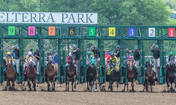 Sunday Stakes, Part 1: RT picks races at Belterra, Monmouth, Gulfstream and Woodbine