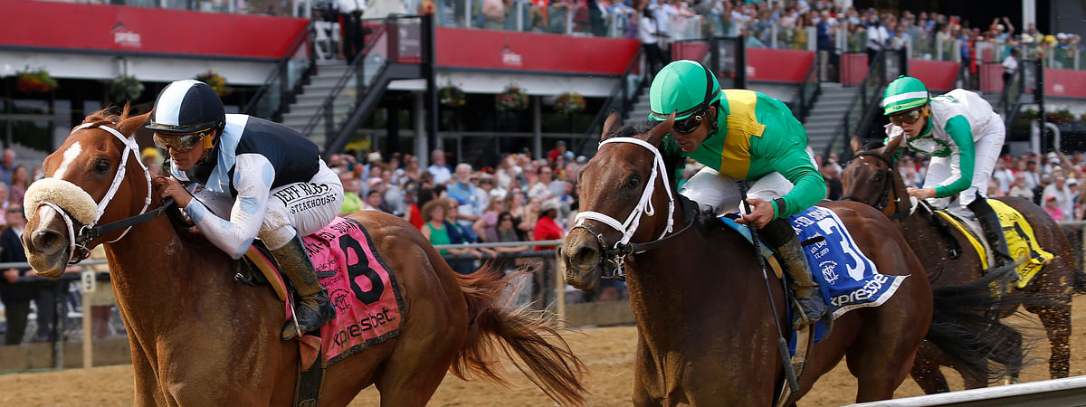 Point of Honor (8) with Javier Castellano aboard wins the Black Eyed Susan horse race at Pimlico on May 17 (Lauren Helber)
