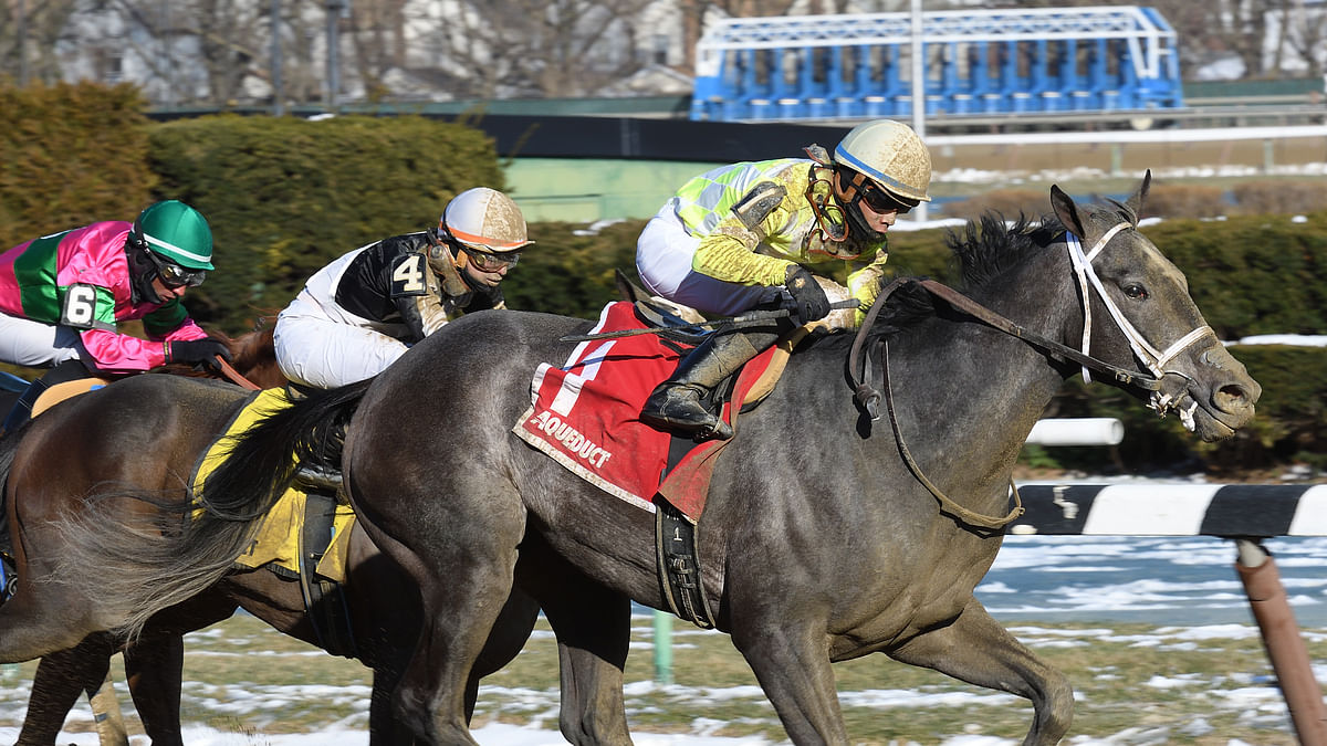 Thoroughbreds Saturday: RT sets his sights on the Cross Country Pick 5 and, of course, the Kentucky Derby