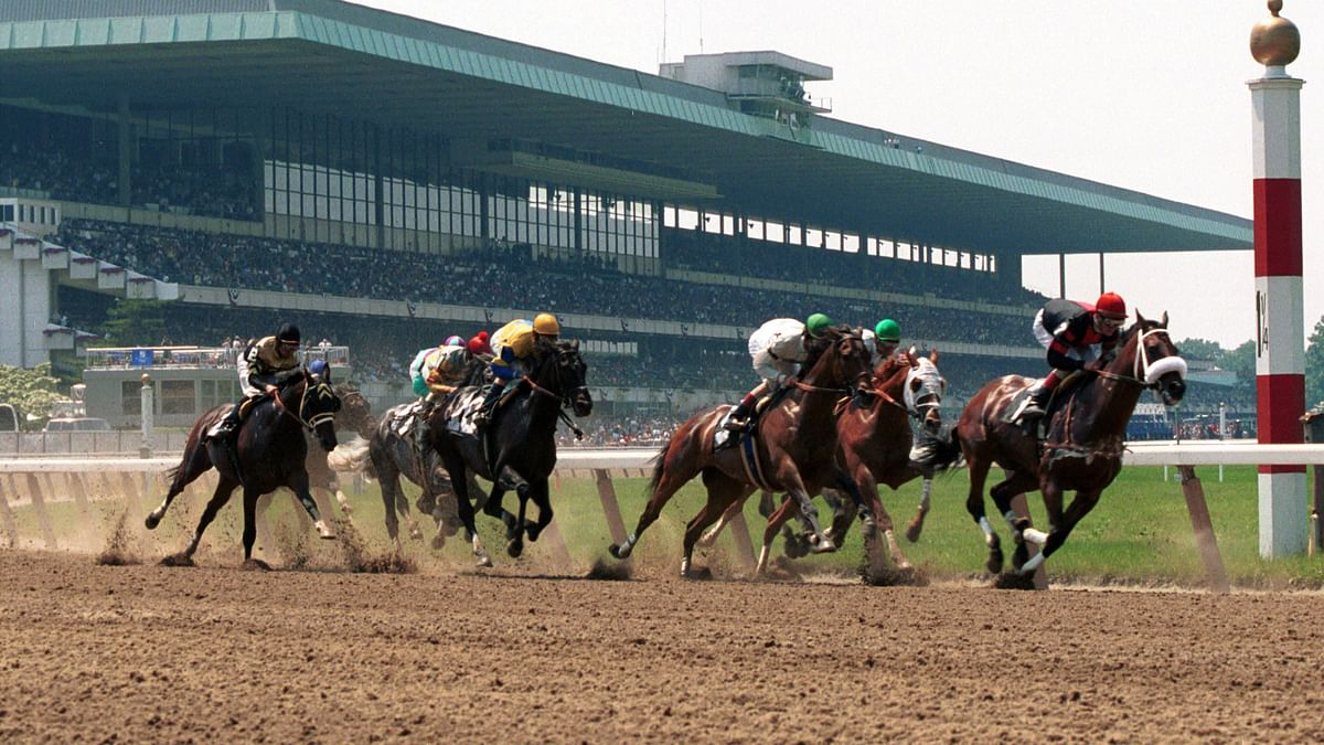 Wednesday Horse Racing: After a winning day yesterday at Fort Erie, RT picks races at Belmont