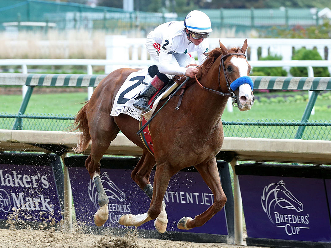 Horse Racing Wednesday: Garrity picks the races at Churchill Downs