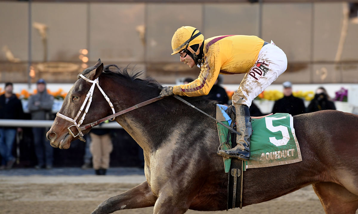 Thoroughbreds Saturday: McMudder picks the stakes at Belmont plus races at Delaware Park, Monmouth, Parx and Pimlico