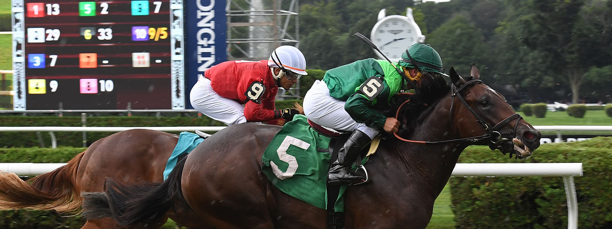 Fog of War, shown last August winning in Saratoga, races today at Belmont.