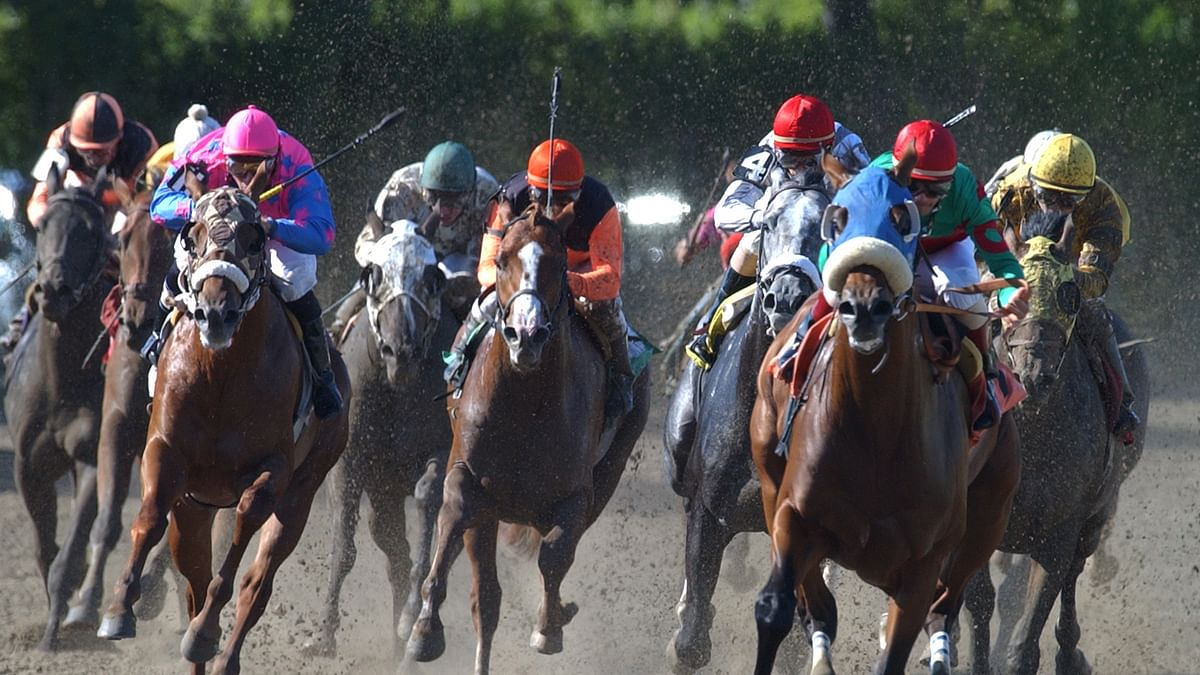 Wednesday Horse Racing: RT picks the mid-week races at Belmont Park