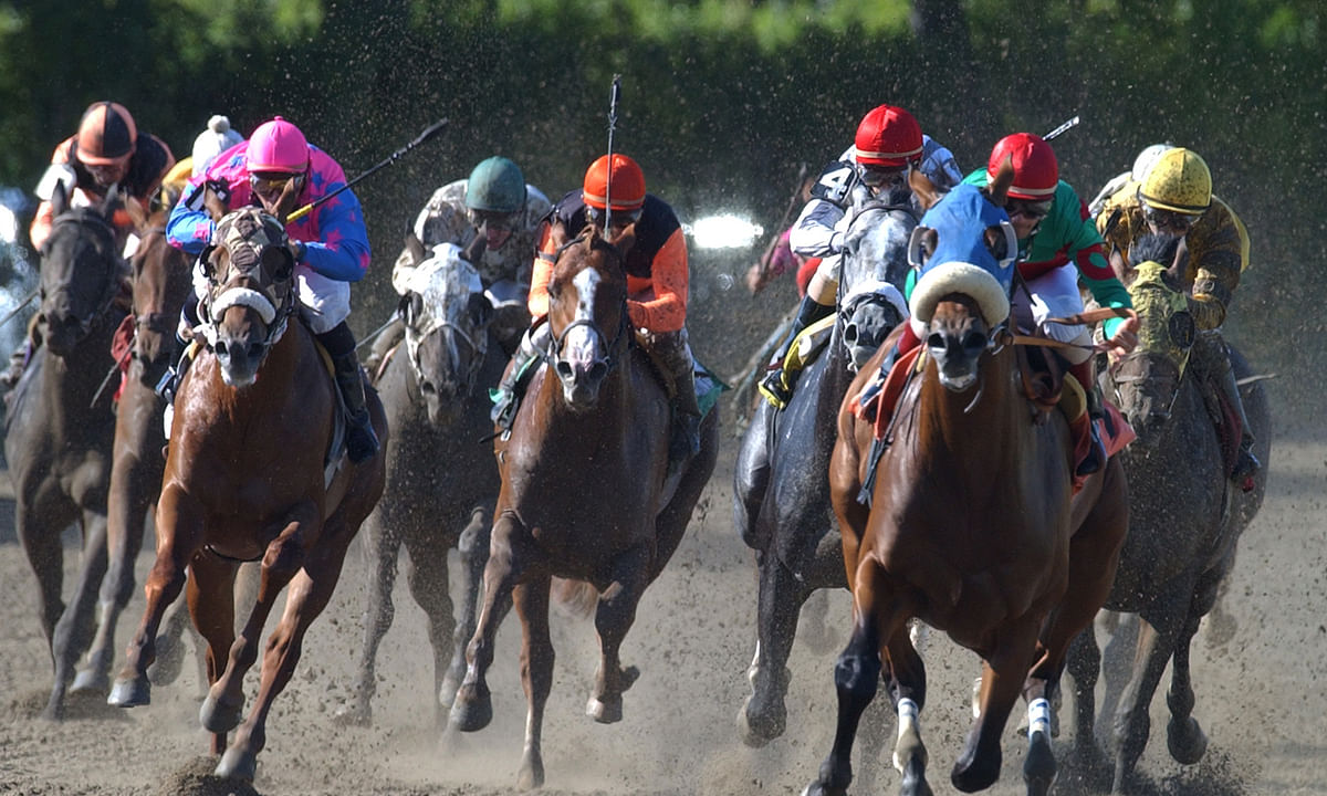 Thoroughbreds Sunday: McMudder has some picks for Belmont, Monmouth and Laurel