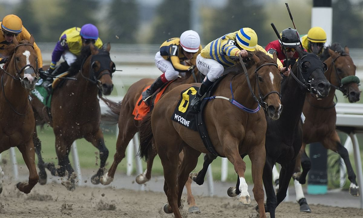 Thoroughbreds Sunday: RT heads to Toronto for the $100K guaranteed Woodbine Early Pick 4