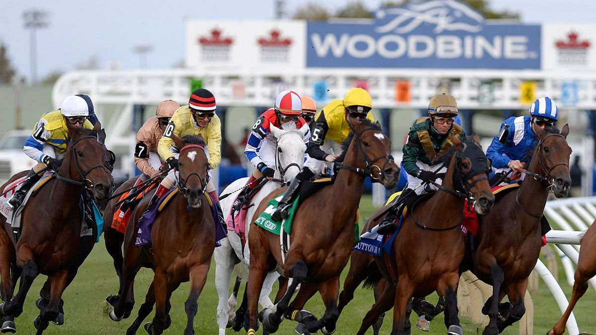 Friday at the track: RT picks the 6th and 7th at Woodbine with the help of the SmartCap system