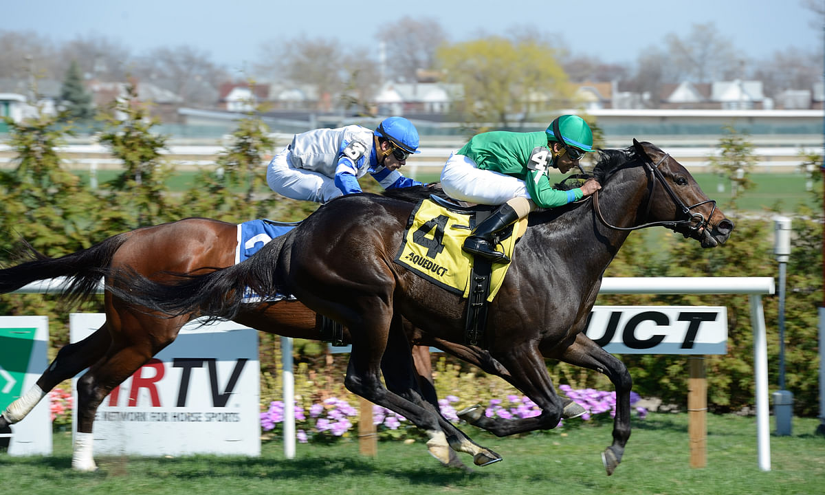 Thoroughbred Sunday: McMudder handicaps races at Belmont, Monmouth and Parx