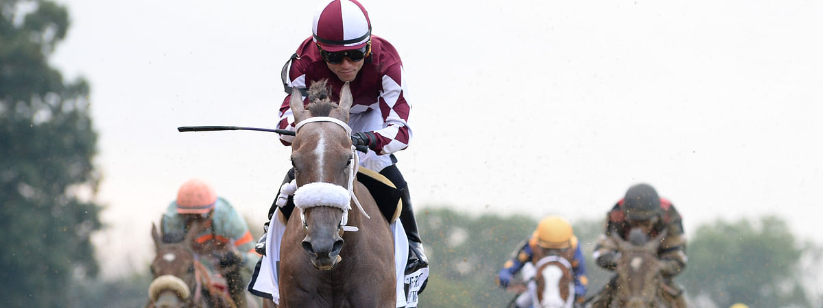 Jaywalk won The Frizette at Belmont in October as a 2-year old. Can She win the Kentucky Oaks?