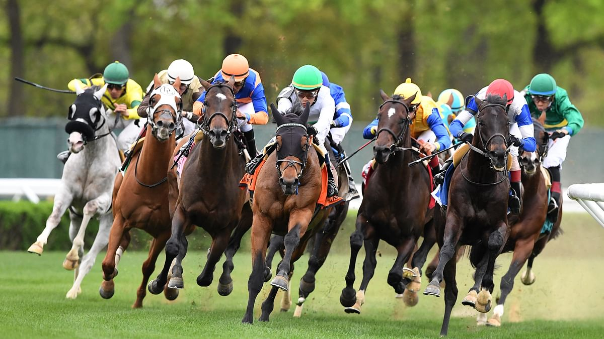 Thoroughbreds Saturday: McMudder picks races at Belmont, Parx, Delaware Park, Monmouth, Laurel, Churchill Downs' Pick 6 & the Kentucky Derby
