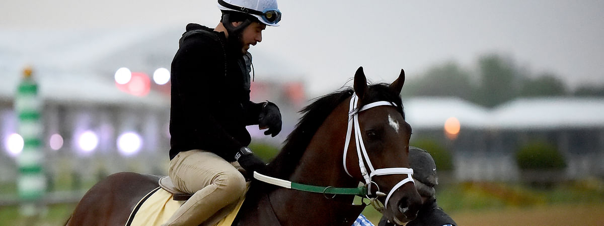 Preakness Stakes entrant Bourbon War is led off the track after exercising, Thursday, May 16, 2019, at Pimlico Race Course in Baltimore. The Preakness Stakes horse race is scheduled to take place Saturday, May 18. (AP Photo/Will Newton)