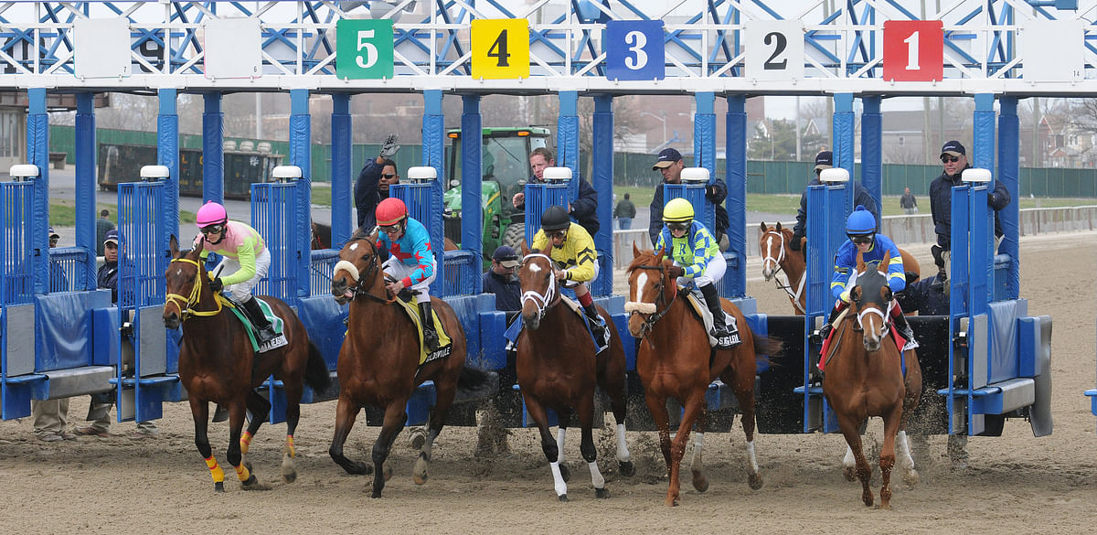 Thoroughbreds Thursday - Garrity Picks Races at Churchill Downs