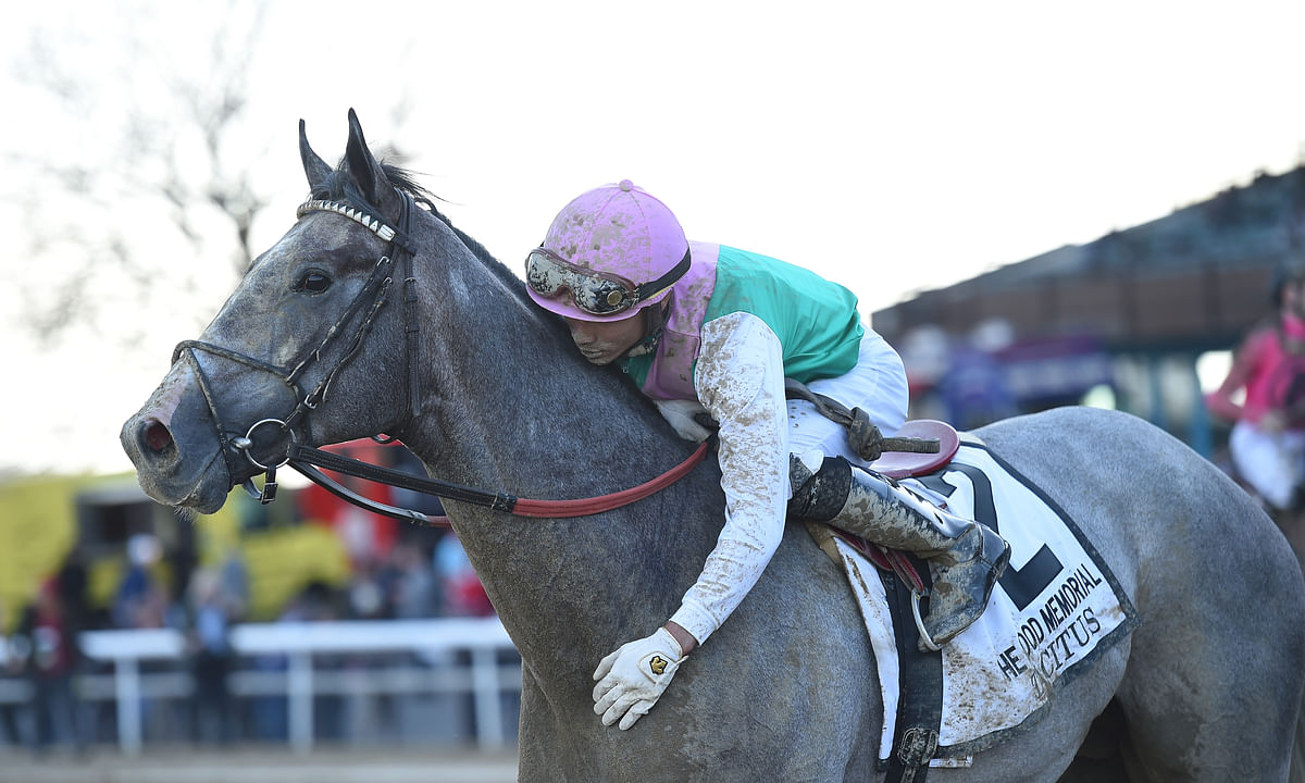 The Belmont Stakes: RT likes the breeding of a longshot
