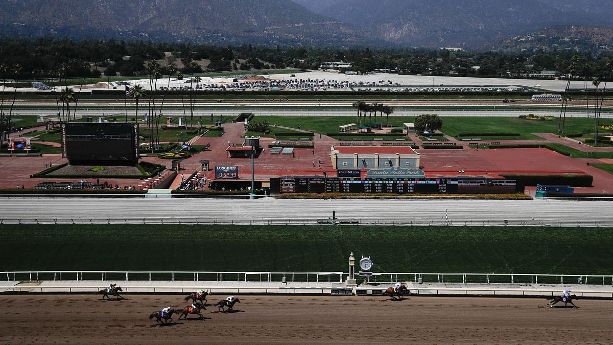 Santa Anita Racetrack. (AP Photo/Chris Carlson)