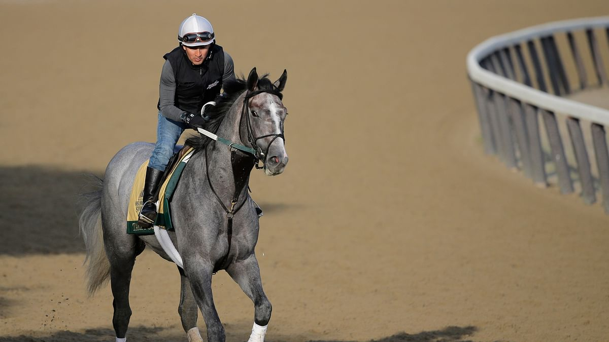 Belmont Stakes: The Associated Press picks Tacitus