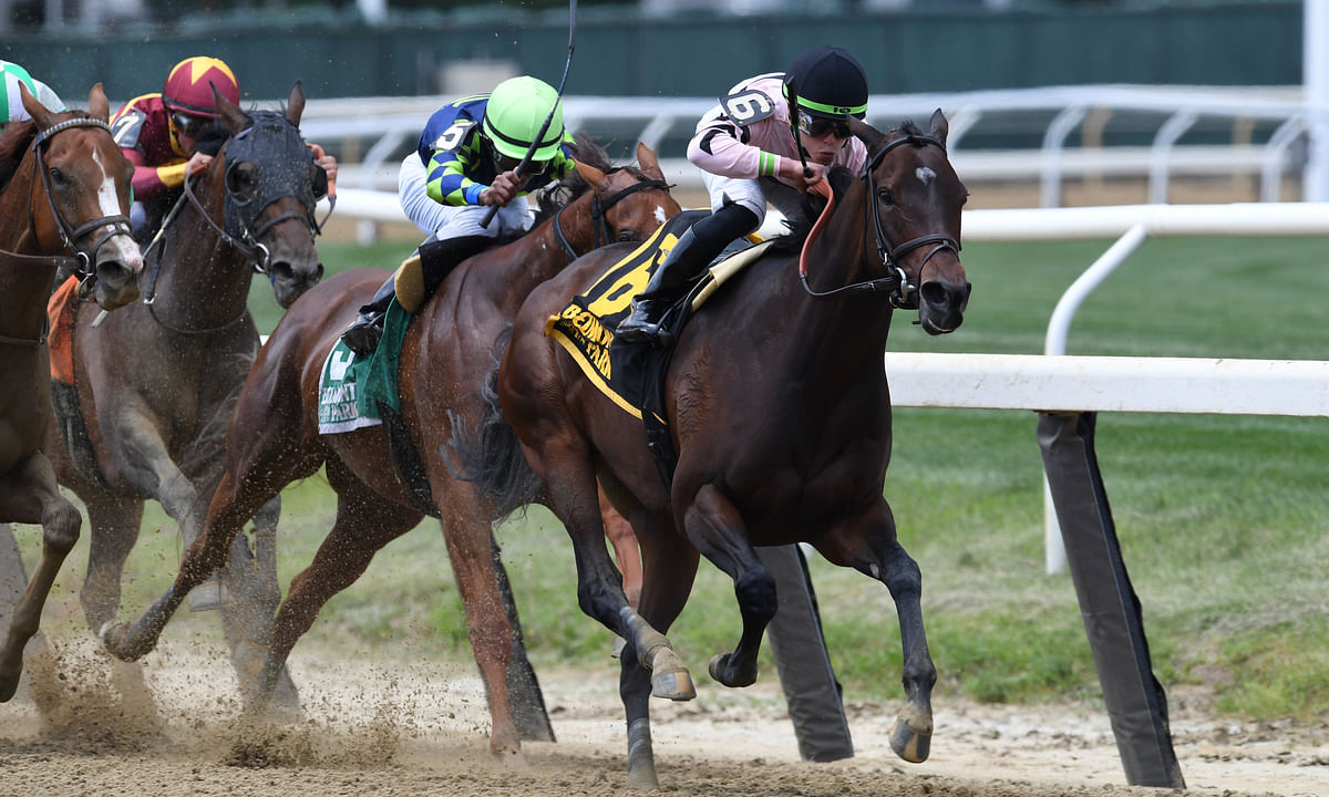 Thoroughbreds Friday -- McMudder on Belmont Park and Getting a Little Naughty at Laurel