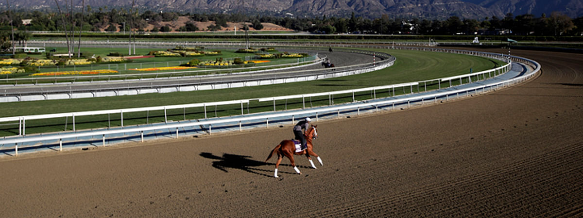 FILE - In this Oct. 30, 2013, file photo, an exercise rider takes a horse for a workout at Santa Anita Park with palm trees and the San Gabriel Mountains as a backdrop in Arcadia, Calif. A second horse in two days and 29th overall died at Santa Anita, Sunday, June 9, 2019, where management has chosen to continue racing for the rest of the current meet. (AP Photo/Jae C. Hong, File)