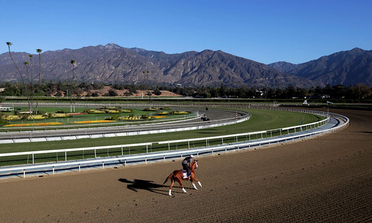 FILE - In this Oct. 30, 2013, file photo, an exercise rider takes a horse for a workout at Santa Anita Park with palm trees and the San Gabriel Mountains as a backdrop in Arcadia, Calif. (AP Photo/Jae C. Hong, File)