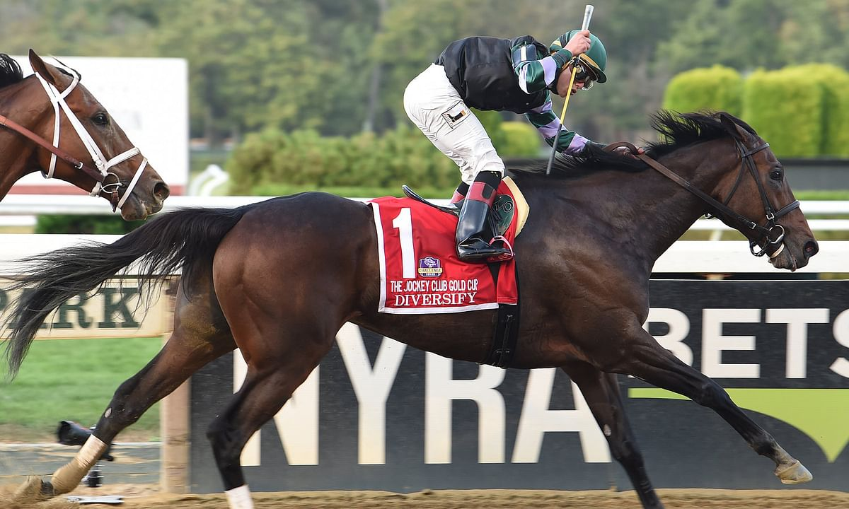 Throughbreds Saturday - McMudders Picks Belmont, Laurel, Parx, Delaware Park, Monmouth