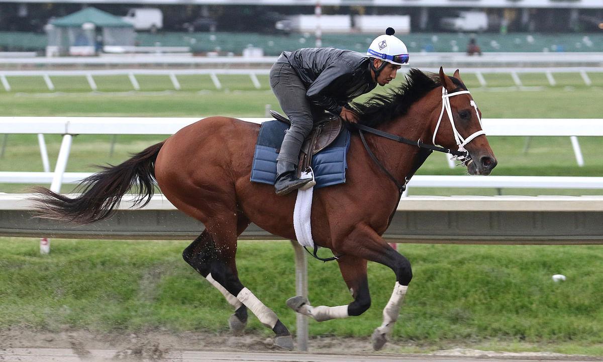Saturday Horse Racing: Garrity picks stakes races at Keeneland, Santa Anita and Belmont Park, where he's betting against Maximum Security