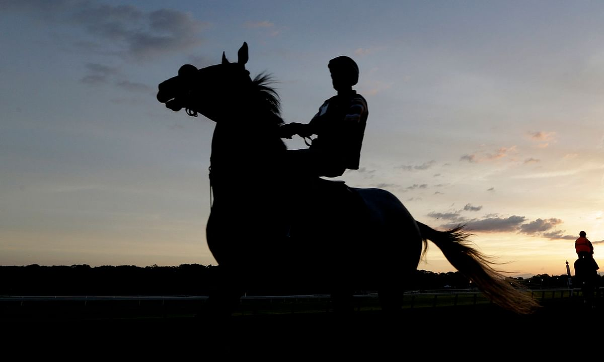 Thoroughbreds Saturday - McMudder Picks the Belmont Stakes and most of the Belmont Park card