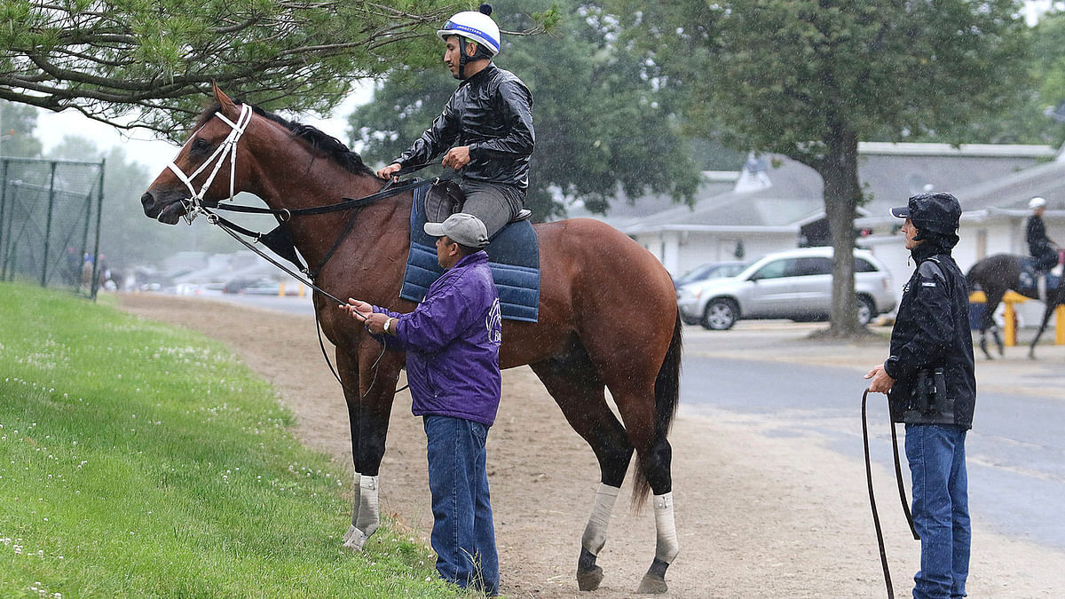 Thoroughbreds Friday - McMudder on Maximum Security, Pegasus Stakes, Travers Stakes, Haskell Stakes, Belmont Park, Monmouth, Laurel