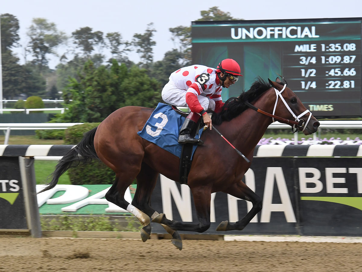 Thoroughbreds Saturday: McMudder picks the G1 Haskell and the rest of the stakes race card at steamy Monmouth