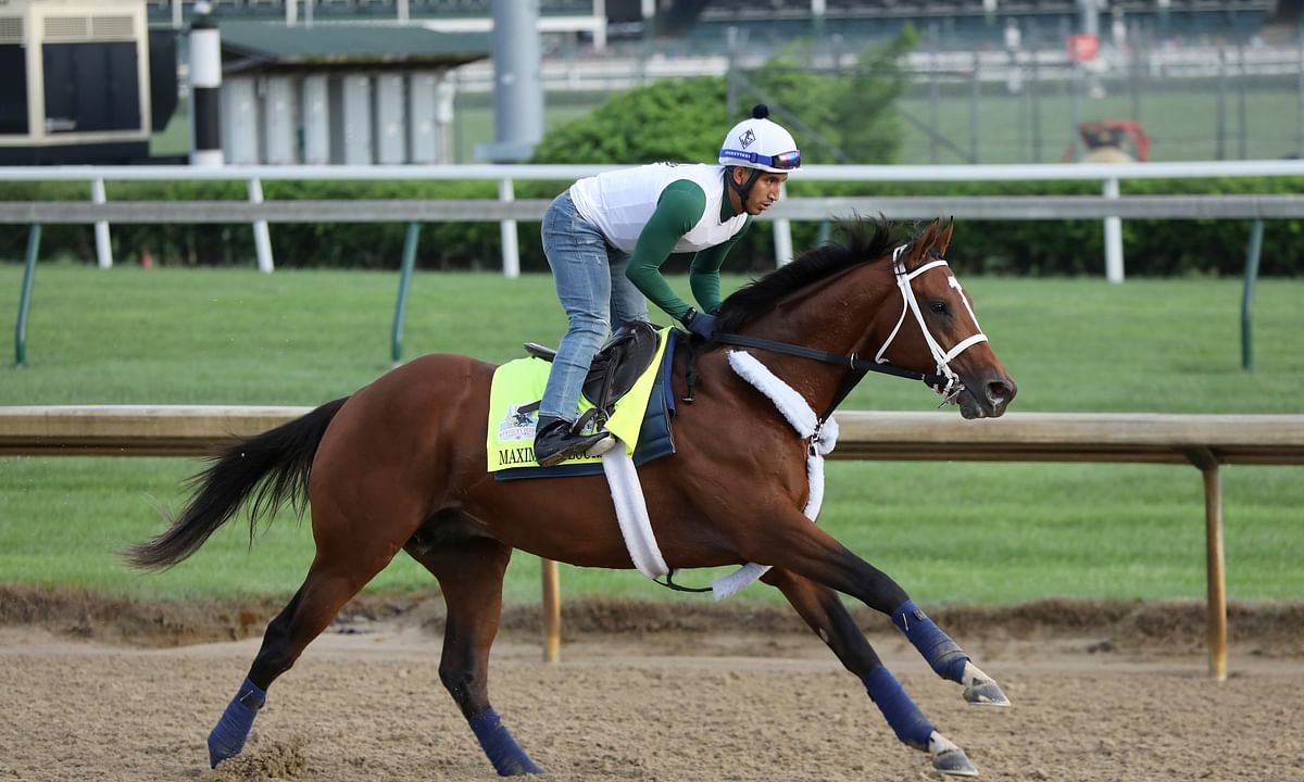 Haskell Invitational: Will Maximum Security be slowed by scorching heat at Monmouth Park?