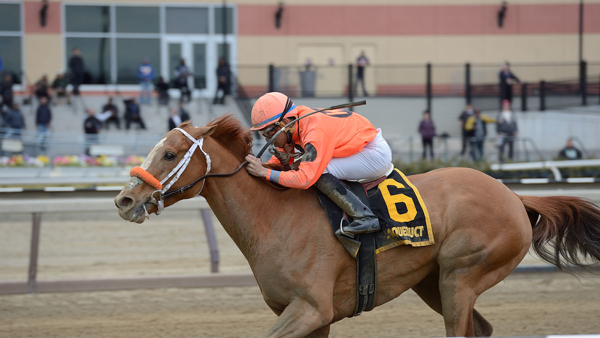 Wednesday Horse Racing: Garrity picks soggy Saratoga and sunny Del Mar