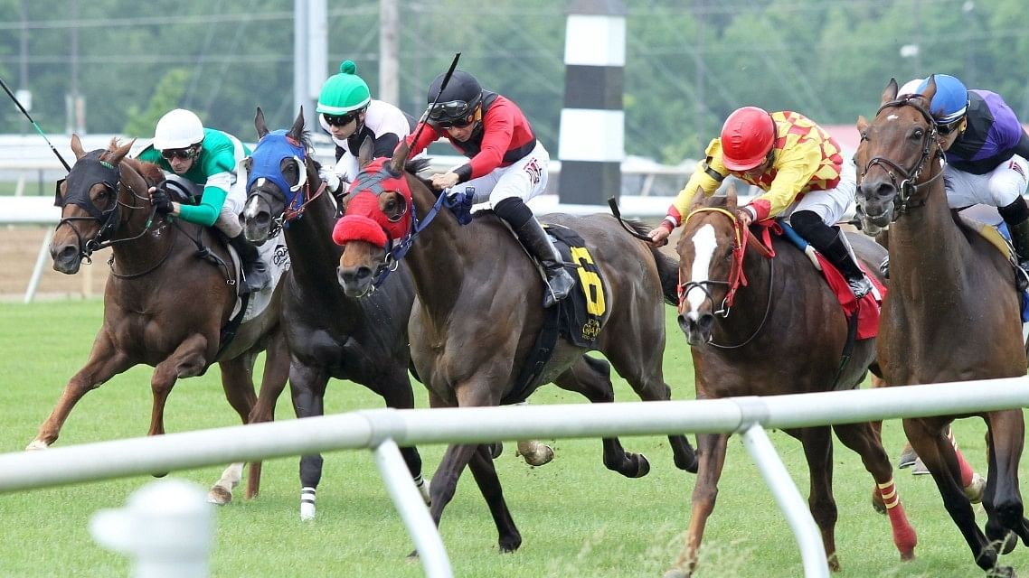 Bet Indiana Stakes Day at Indiana Grand: RT and SmartCap pick races 7 through 11