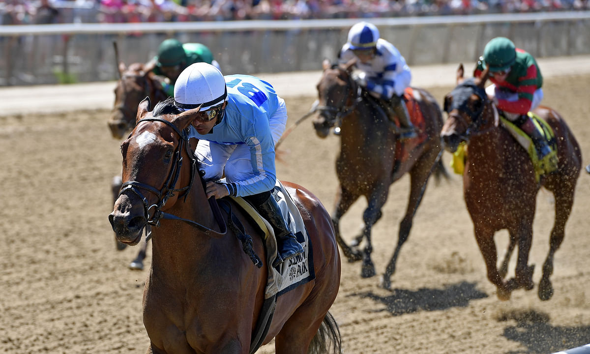 Saturday Horse Racing: Garrity jumps on the Cross Country Pick 5 with races from Far Hills and Belmont Park