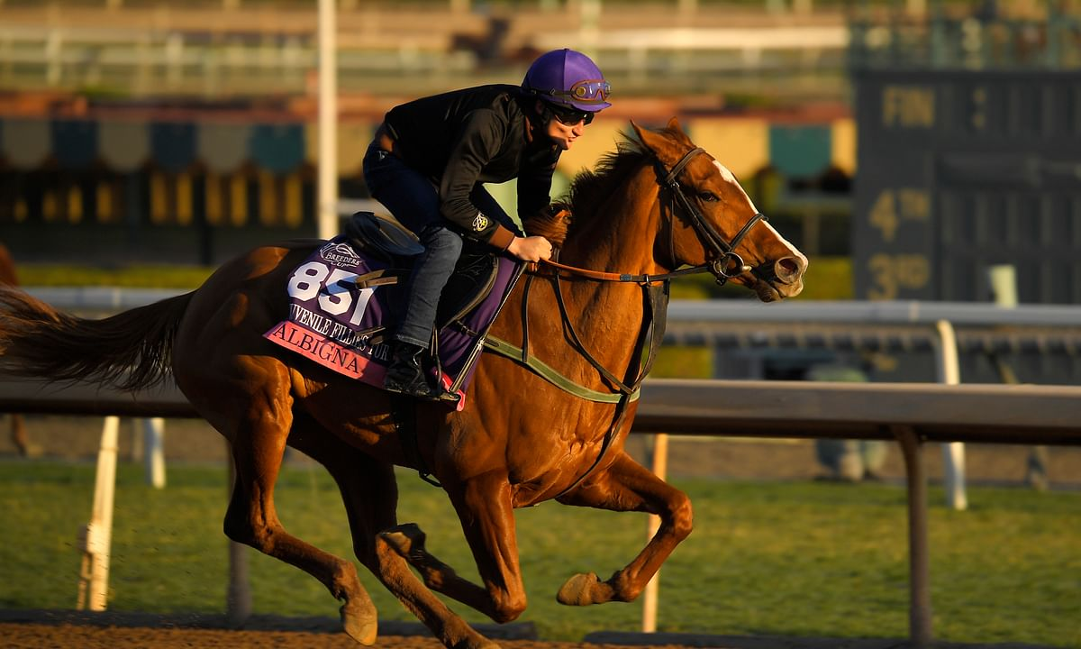 Breeders' Cup Friday: RT picks the card at Santa Anita including the Juvenile races