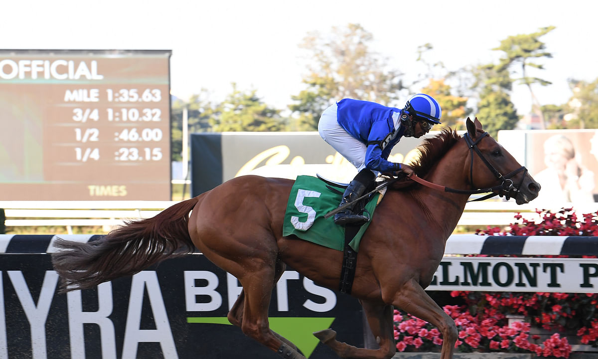 Saturday Stakes Racing 1: Garrity picks Aqueduct, Churchill Downs and the wet grass of Del Mar in the year's last BIG day of racing