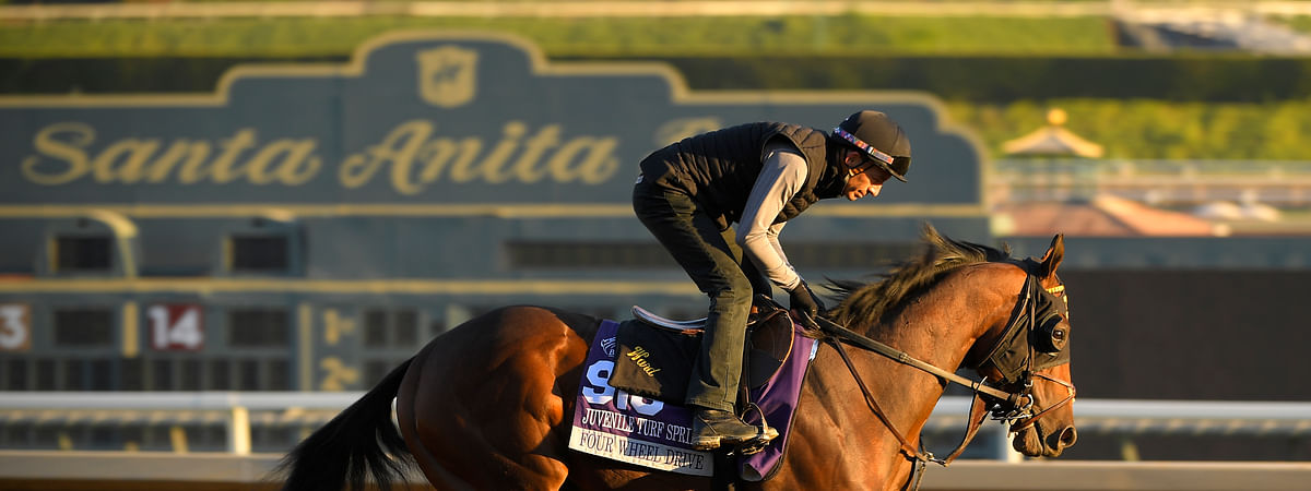 Four Wheel Drive, entered in the Juvenile Turf Sprint horse race, works out on the track at Santa Anita Park for the Breeders' Cup, Thursday, Oct. 31, 2019, in Arcadia, Calif. (AP Photo/Mark J. Terrill)