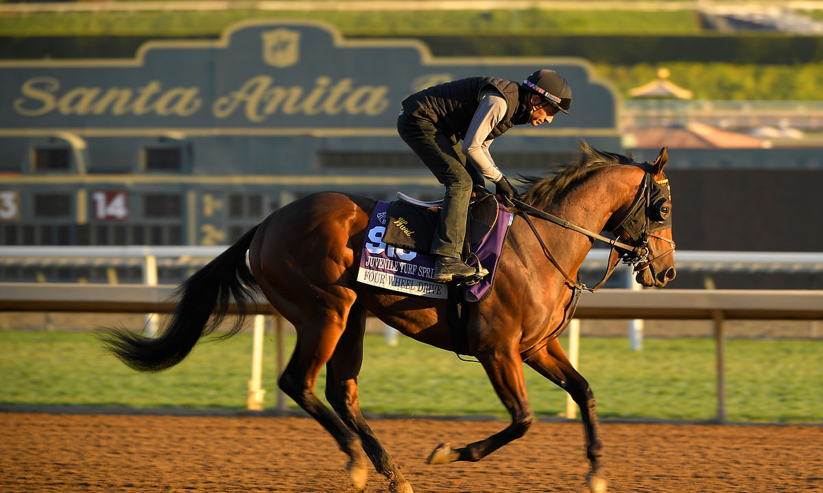 Breeders' Cup Friday: Garrity picks the Juvenile races and a variety Pick 3 bets
