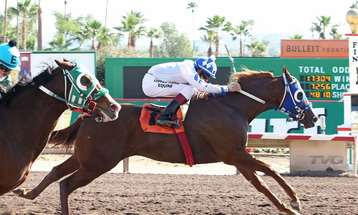 Thoroughbred Tuesday: Garrity picks sunny races at Turf Paradise in Phoenix, Arizona