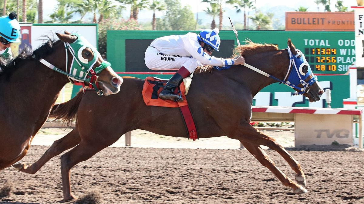 Garrity's Friday Dad's Hat Happy Hour picks: Santa Anita, Oaklawn, Gulfstream, Fair Grounds, and Turf Paradise