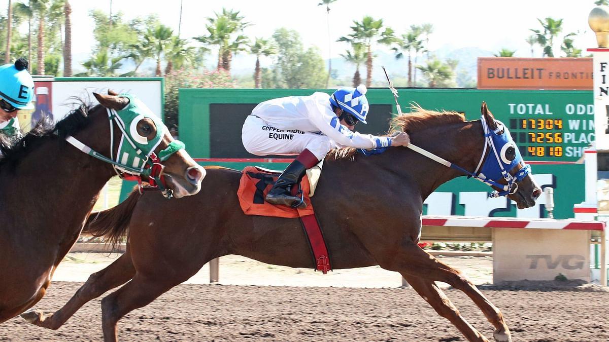 CHECK THIS WAGON races at Turf Paradise in Phoenix, Arizona.