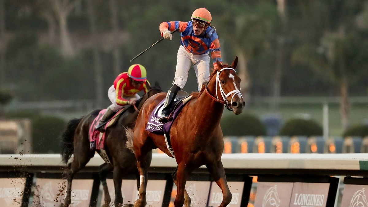 Vino Rosso wins Breeders' Cup Classic marred by horse injury