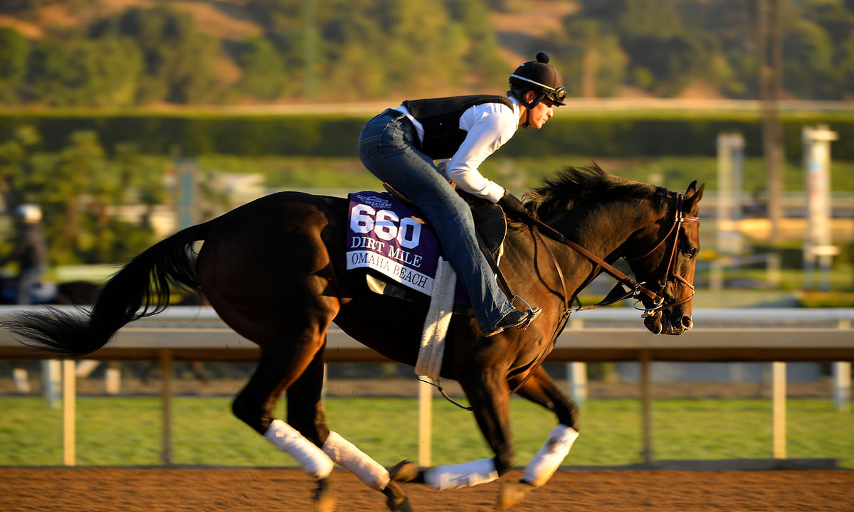 Breeders' Cup Saturday: Garrity picks a card of tough races but really likes Covfefe, Omaha Beach and Mitole