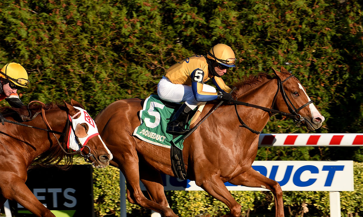 Garrity's Saturday Stakes looks at races at Gulfstream, FairGrounds and Santa Anita