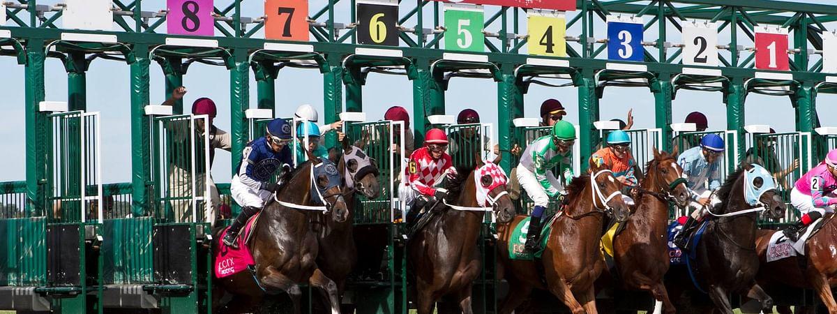Horse Racing at Parx Racing