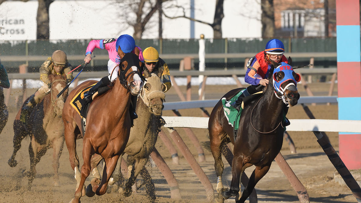 FREE SmartCap Race Pick for the 8th at Aqueduct, the $100K Broadway Stakes