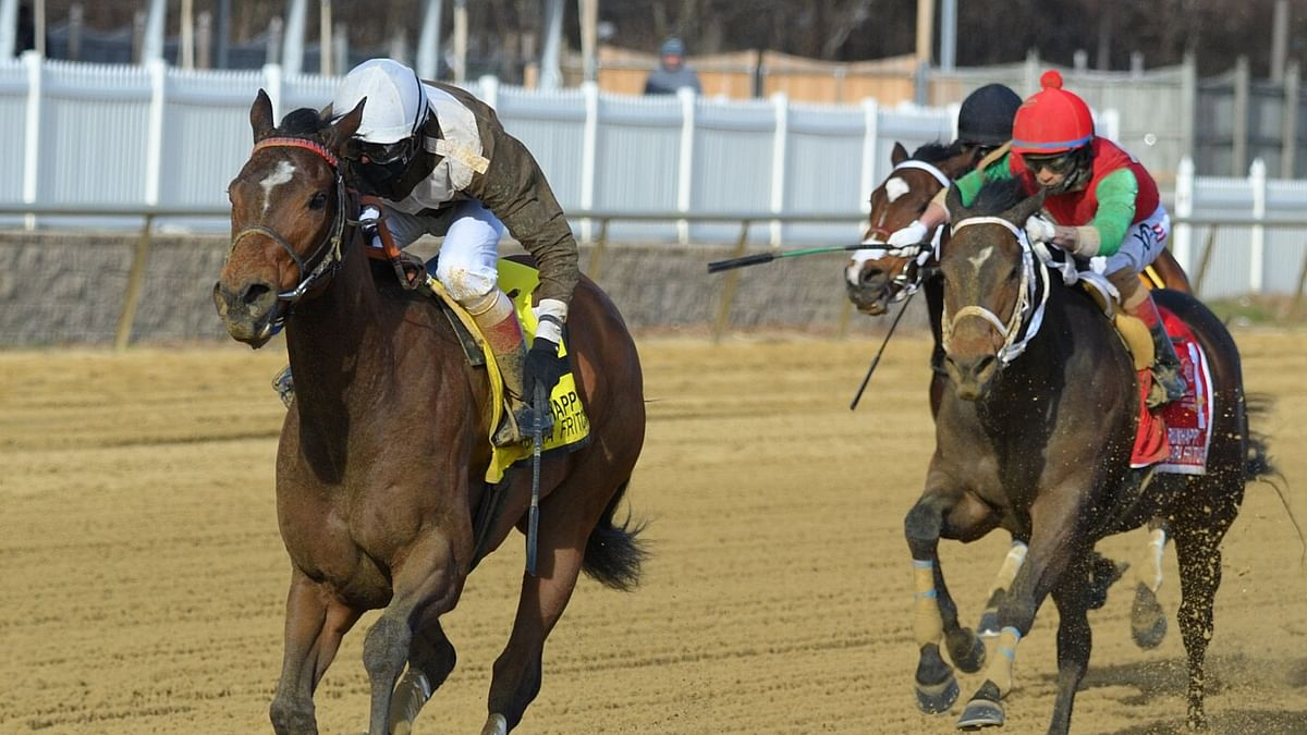 RT picks three races at Laurel Park and shares his virtual stable of the horses he's watching Thursday