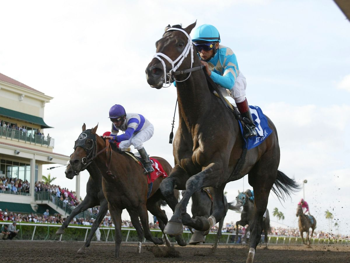 Thoroughbred Thursday: Garrity picks the horses racing at Gulfstream Park —4 straight picks, a Pick 4, and more