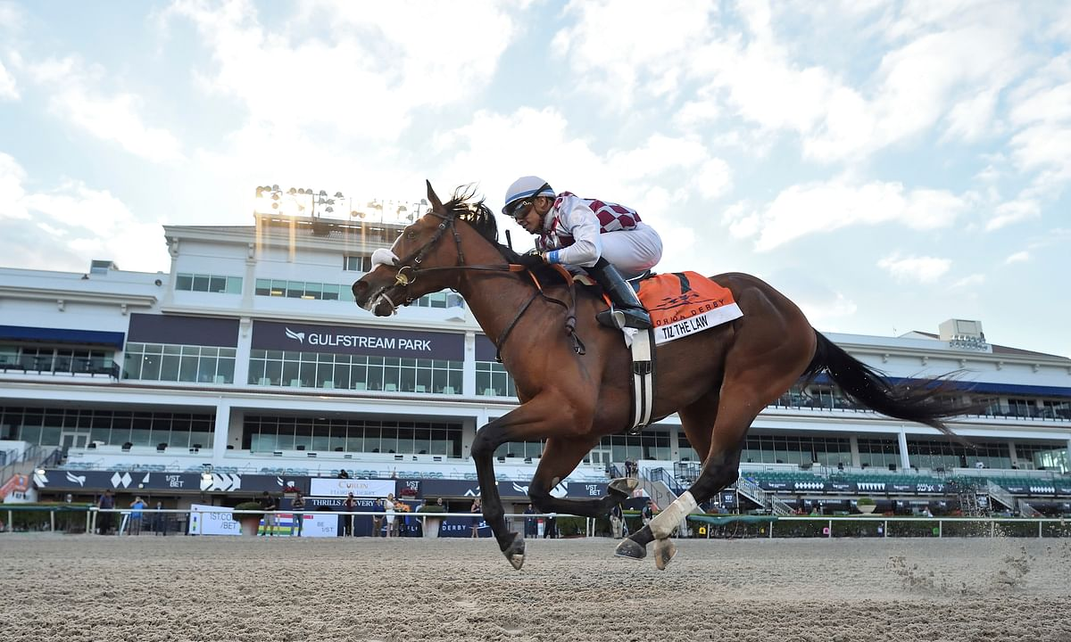 Bet the horses! Garrity picks races at Tampa Bay Downs, Gulfstream Park, and Oaklawn Park — including the $100,000 Rainbow Miss Stakes