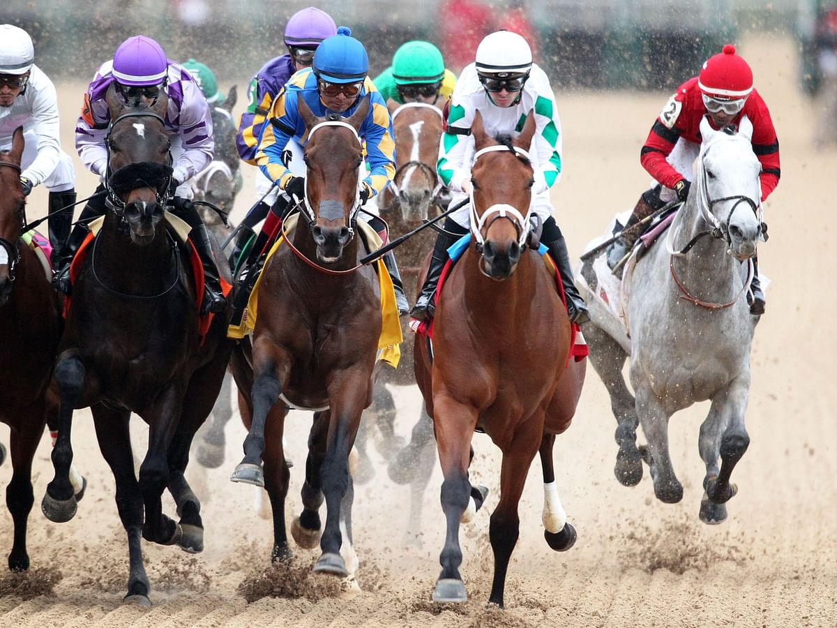Bet the horses: Garrity picks the races at Oaklawn Park